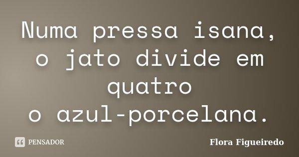 Numa pressa isana, o jato divide em quatro o azul-porcelana.... Frase de Flora Figueiredo.