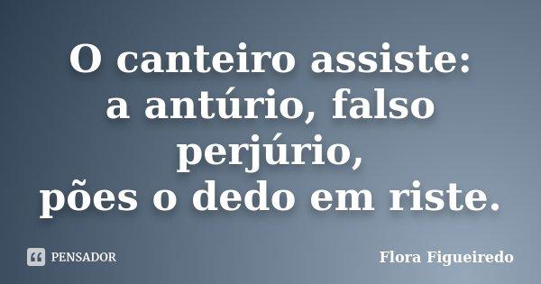 O canteiro assiste: a antúrio, falso perjúrio, pões o dedo em riste.... Frase de Flora Figueiredo.