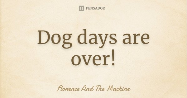 Dog days are over!... Frase de Florence and The Machine.