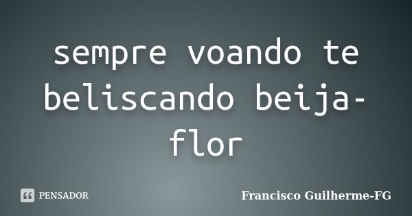 sempre voando te beliscando beija-flor... Frase de Francisco Guilherme-FG.