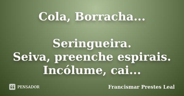Cola, Borracha... Seringueira. Seiva, preenche espirais. Incólume, cai...... Frase de Francismar Prestes Leal.