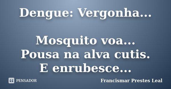 Dengue: Vergonha... Mosquito voa... Pousa na alva cutis. E enrubesce...... Frase de Francismar Prestes Leal.