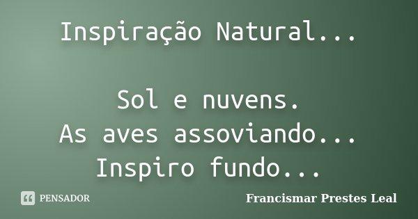 Inspiração Natural... Sol e nuvens. As aves assoviando... Inspiro fundo...... Frase de Francismar Prestes Leal.