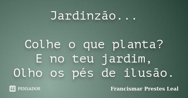 Jardinzão... Colhe o que planta? E no teu jardim, Olho os pés de ilusão.... Frase de Francismar Prestes Leal.