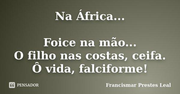 Na África... Foice na mão... O filho nas costas, ceifa. Ô vida, falciforme!... Frase de Francismar Prestes Leal.