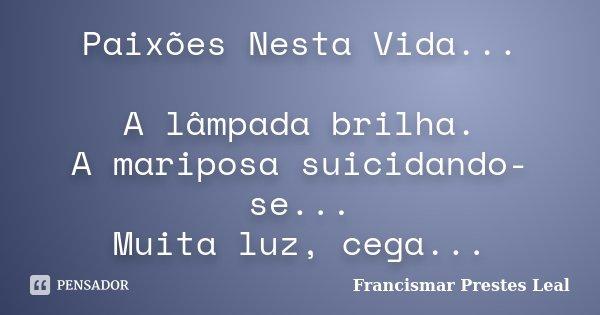 Paixões Nesta Vida... A lâmpada brilha. A mariposa suicidando-se... Muita luz, cega...... Frase de Francismar Prestes Leal.