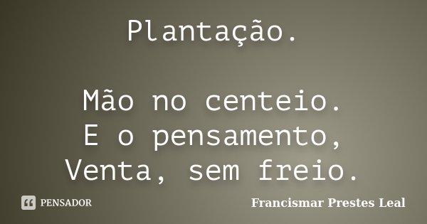 Plantação. Mão no centeio. E o pensamento, Venta, sem freio.... Frase de Francismar Prestes Leal.