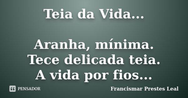 Teia da Vida... Aranha, mínima. Tece delicada teia. A vida por fios...... Frase de Francismar Prestes Leal.
