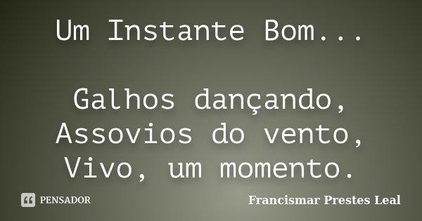 Um Instante Bom... Galhos dançando, Assovios do vento, Vivo, um momento.... Frase de Francismar Prestes Leal.