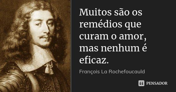 Muitos são os remédios que curam o amor, mas nenhum é eficaz.... Frase de François La Rochefoucauld.