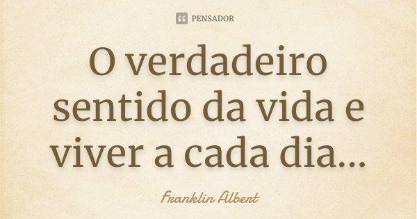O verdadeiro sentido da vida e viver a cada dia...... Frase de Franklin Albert.