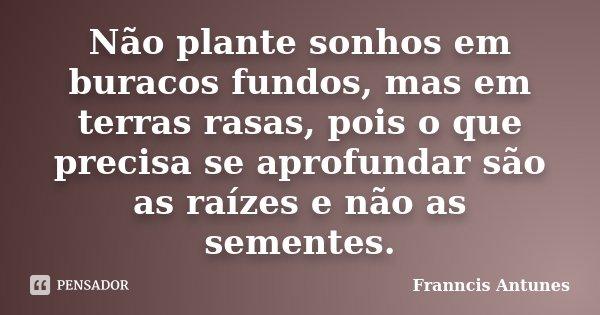 Não plante sonhos em buracos fundos, mas em terras rasas, pois o que precisa se aprofundar são as raízes e não as sementes.... Frase de Franncis Antunes.