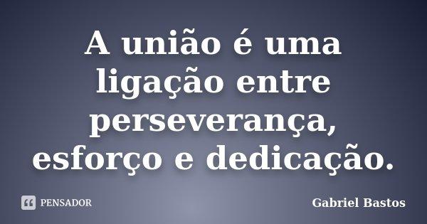 A união é uma ligação entre perseverança, esforço e dedicação... Frase de Gabriel Bastos.