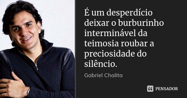 É um desperdício deixar o burburinho interminável da teimosia roubar a preciosidade do silêncio.... Frase de Gabriel Chalita.