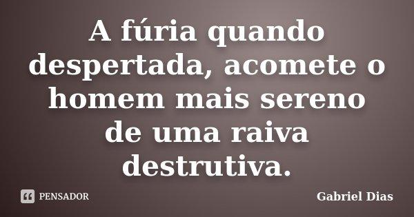 A fúria quando despertada, acomete o homem mais sereno de uma raiva destrutiva.... Frase de Gabriel Dias.
