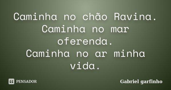 Caminha no chão Ravina. Caminha no mar oferenda. Caminha no ar minha vida.... Frase de Gabriel garfinho.