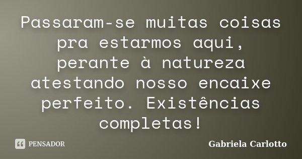 Passaram-se muitas coisas pra estarmos aqui, perante à natureza atestando nosso encaixe perfeito. Existências completas!... Frase de Gabriela Carlotto.