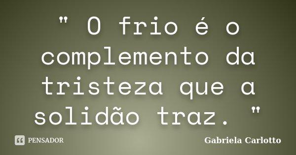 """"""" O frio é o complemento da tristeza que a solidão traz. """"... Frase de Gabriela Carlotto."""
