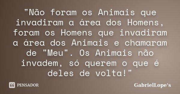 """""""Não foram os Animais que invadiram a área dos Homens, foram os Homens que invadiram a área dos Animais e chamaram de """"Meu"""". Os Animais não invad... Frase de GabrielLope's."""