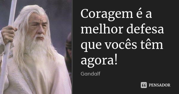 Coragem é a melhor defesa que vocês têm agora!... Frase de Gandalf.