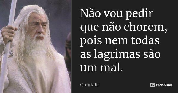 Não vou pedir que não chorem, pois nem todas as lagrimas são um mal.... Frase de Gandalf.