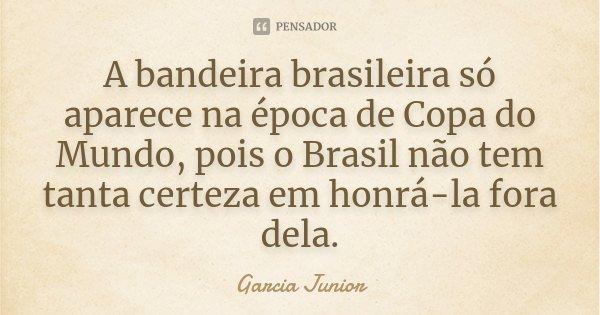 A bandeira brasileira só aparece na época de Copa do Mundo, pois o Brasil não tem tanta certeza em honrá-la fora dela.... Frase de Garcia Junior.