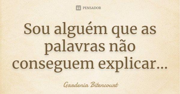 Sou alguém que as palavras não conseguem explicar...... Frase de Gardenia Bitencourt.