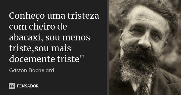 """Conheço uma tristeza com cheiro de abacaxi, sou menos triste,sou mais docemente triste""""... Frase de Gaston Bachelard."""
