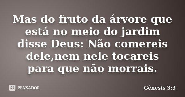 Mas do fruto da árvore que está no meio do jardim disse Deus: Não comereis dele,nem nele tocareis para que não morrais.... Frase de Gênesis 3:3.