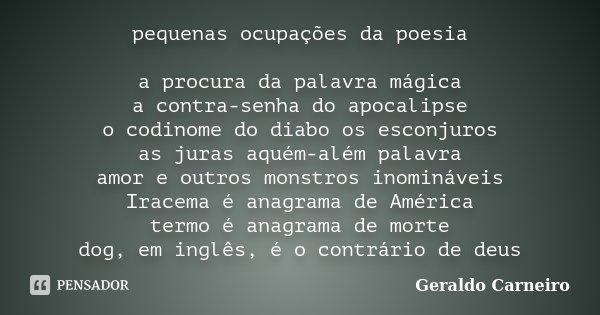 Amor Além Das Nuvens Poemas E Frases: Pequenas Ocupações Da Poesia A Procura... Geraldo Carneiro