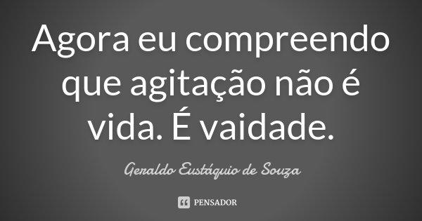 Agora eu compreendo que agitação não é vida. É vaidade.... Frase de Geraldo Eustáquio de Souza.