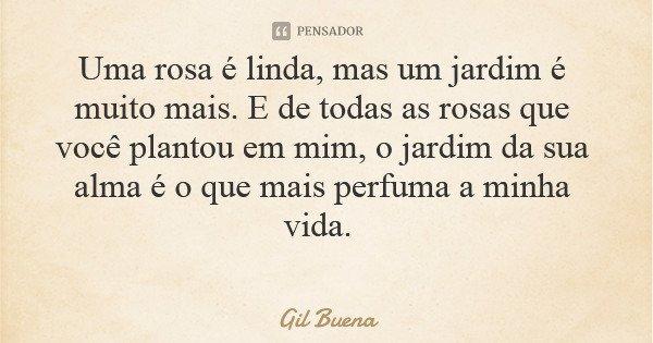 Uma rosa é linda, mas um jardim é muito mais. E de todas as rosas que você plantou em mim, o jardim da sua alma é o que mais perfuma a minha vida.... Frase de Gil Buena.