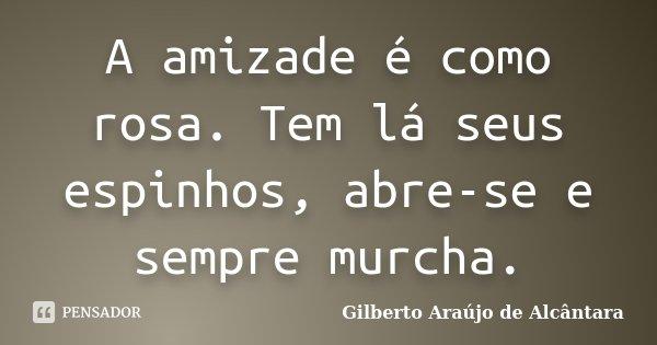 A amizade é como rosa. Tem lá seus espinhos, abre-se e sempre murcha.... Frase de Gilberto Araújo de Alcântara.