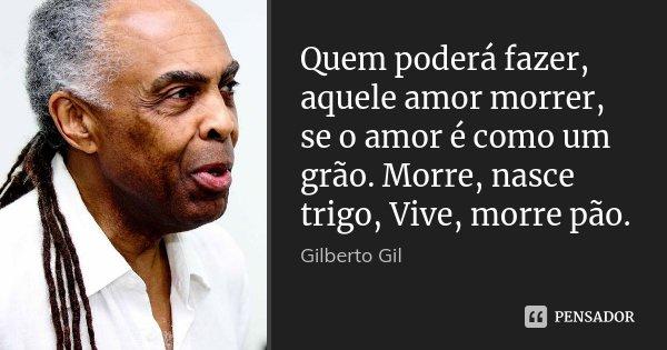 Quem poderá fazer, aquele amor morrer, se o amor é como um grão. Morre, nasce trigo, Vive, morre pão.... Frase de Gilberto Gil.
