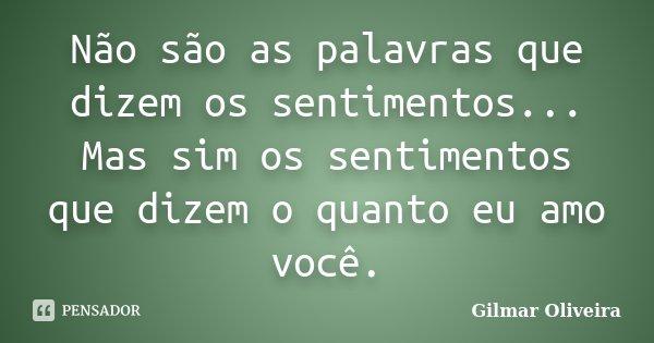 Não são as palavras que dizem os sentimentos... Mas sim os sentimentos que dizem o quanto eu amo você.... Frase de Gilmar Oliveira.