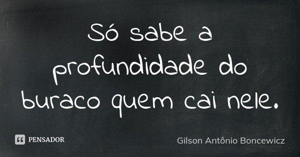 Só sabe a profundidade do buraco quem cai nele.... Frase de Gilson Antônio Boncewicz.