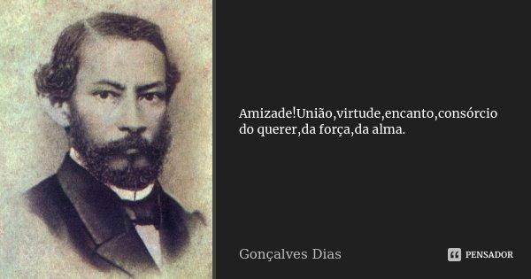 Amizade!União,virtude,encanto,consórcio do querer,da força,da alma.... Frase de Gonçalves Dias.