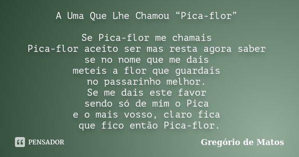 """A Uma Que Lhe Chamou """"Pica-flor"""" Se Pica-flor me chamais Pica-flor aceito ser mas resta agora saber se no nome que me dais meteis a flor que guardais no passari... Frase de Gregório de Matos."""