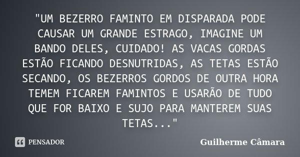 """""""UM BEZERRO FAMINTO EM DISPARADA PODE CAUSAR UM GRANDE ESTRAGO, IMAGINE UM BANDO DELES, CUIDADO! AS VACAS GORDAS ESTÃO FICANDO DESNUTRIDAS, AS TETAS ESTÃO ... Frase de Guilherme Câmara."""