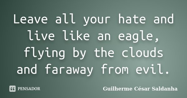 Leave all your hate and live like an eagle, flying by the clouds and faraway from evil.... Frase de Guilherme César Saldanha.