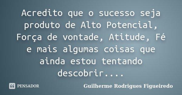 Acredito que o sucesso seja produto de Alto Potencial, Força de vontade, Atitude, Fé e mais algumas coisas que ainda estou tentando descobrir....... Frase de Guilherme Rodrigues Figueiredo.