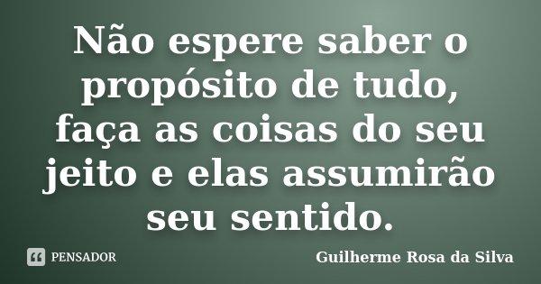 Não espere saber o propósito de tudo, faça as coisas do seu jeito e elas assumirão seu sentido.... Frase de Guilherme Rosa da Silva.