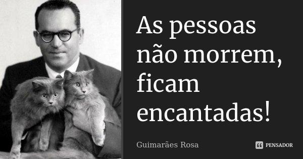As pessoas não morrem, ficam encantadas!... Frase de Guimarães Rosa.