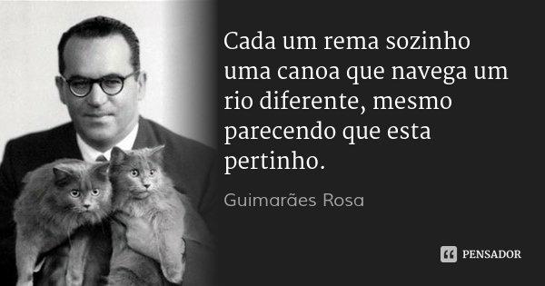 Cada um rema sozinho uma canoa que navega um rio diferente, mesmo parecendo que esta pertinho.... Frase de Guimarães Rosa.