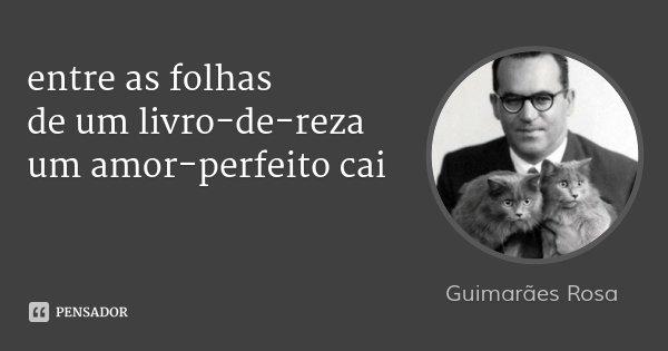 entre as folhas de um livro-de-reza um amor-perfeito cai... Frase de Guimarães Rosa.