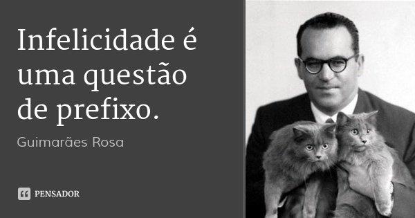 Infelicidade é uma questão de prefixo.... Frase de Guimarães Rosa.