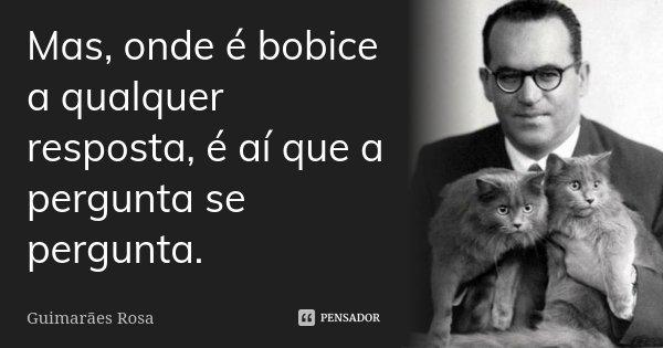 Mas, onde é bobice a qualquer resposta, é aí que a pergunta se pergunta.... Frase de Guimarães Rosa.