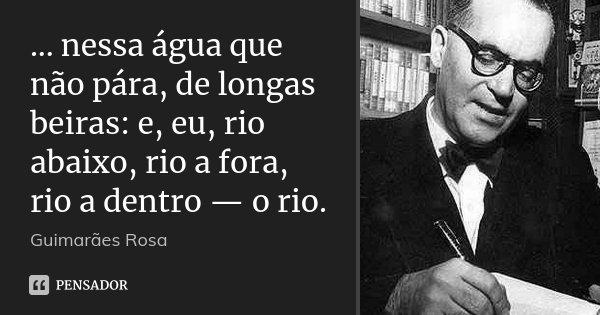 ... nessa água que não pára, de longas beiras: e, eu, rio abaixo, rio a fora, rio a dentro — o rio.... Frase de Guimarães Rosa.