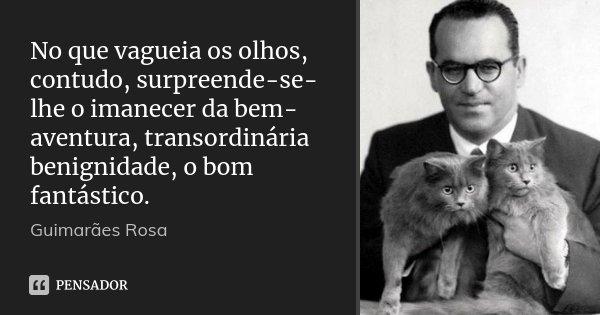 No que vagueia os olhos, contudo, surpreende-se-lhe o imanecer da bem-aventura, transordinária benignidade, o bom fantástico.... Frase de Guimarães Rosa.