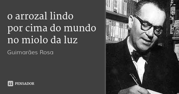 o arrozal lindo por cima do mundo no miolo da luz... Frase de Guimarães Rosa.